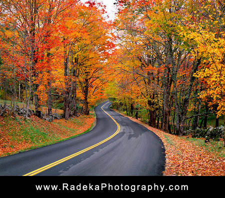 Autumn-Road-L.jpg