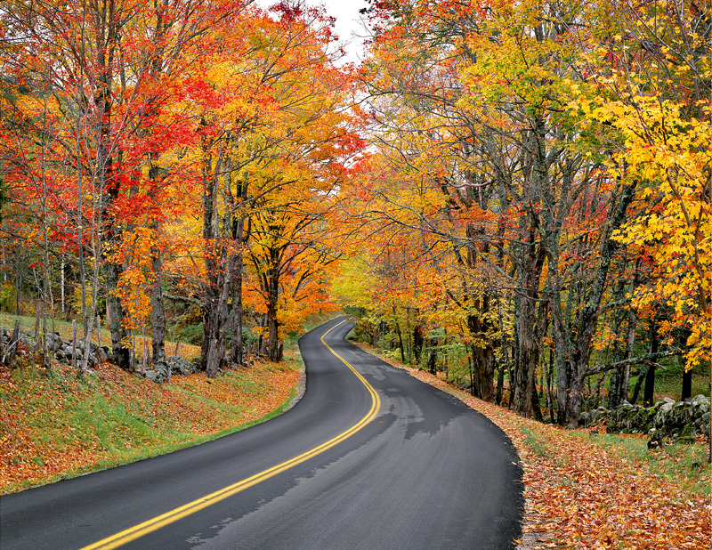 Autumn Road, 1999. East Orange, Vermont