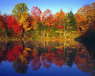 http://www.radekaphotography.com/images/AutumnTreesNlake-L2.jpg