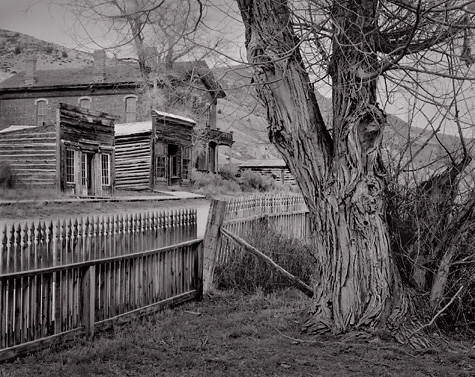 Fence and Cottonwood, Bannack, Montana. Black and white ghost town photograph